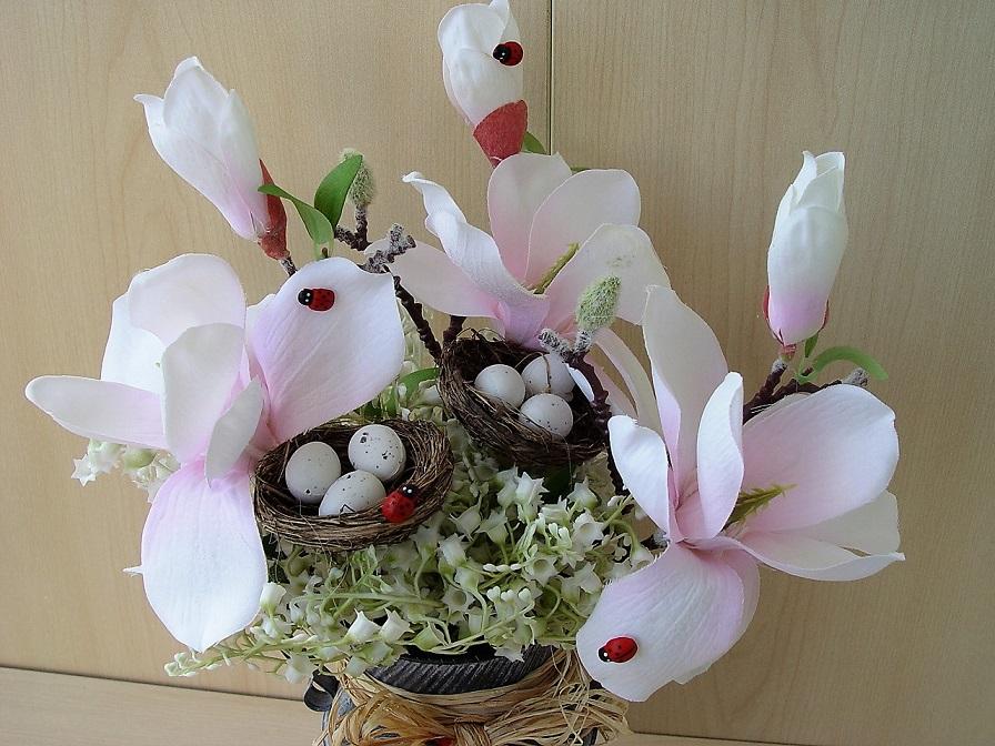Jarní rozkvetlé květy magnólie